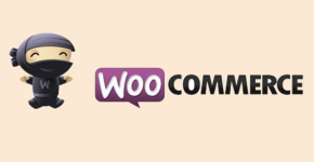 Woo-commerce Plugins
