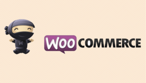 Woo-commerce Plugins