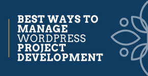 Manage-WordPress-Project-Development