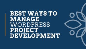 Manage-WordPress-Project-Development
